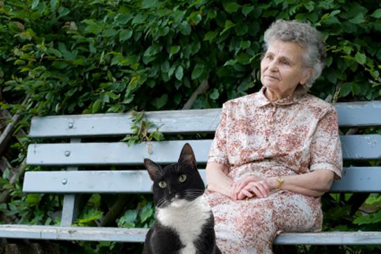 starija gospođa i mačka