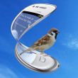 Vrabac Hrvoje i mobiteli
