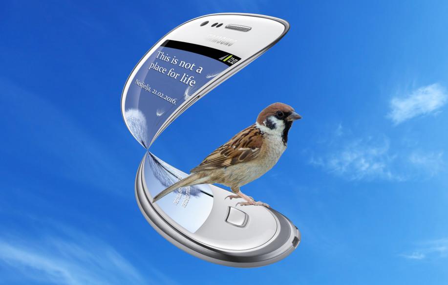 Vrabac i mobiteli