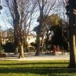 Parkovi su gradske oaze