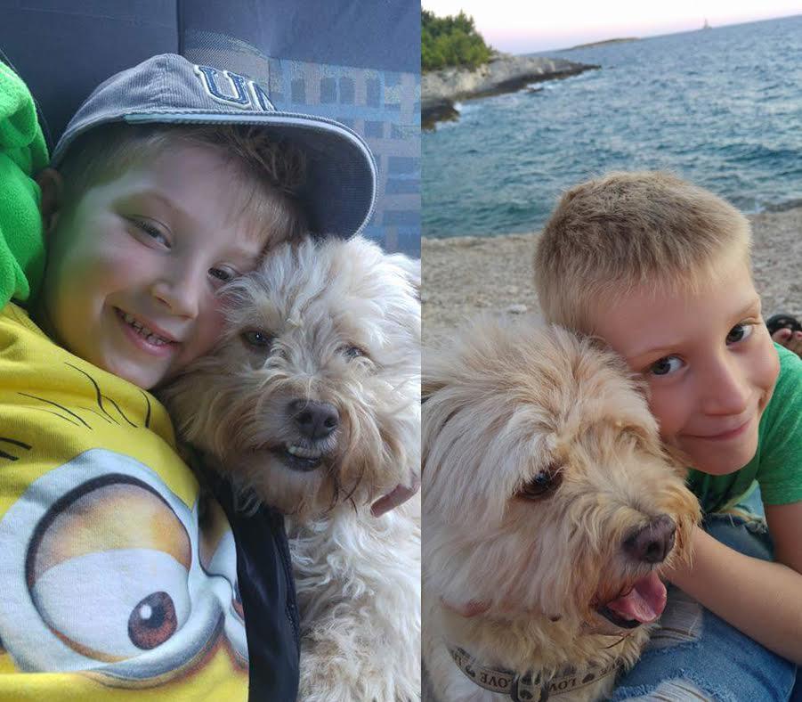 djeca i kućni ljubimci